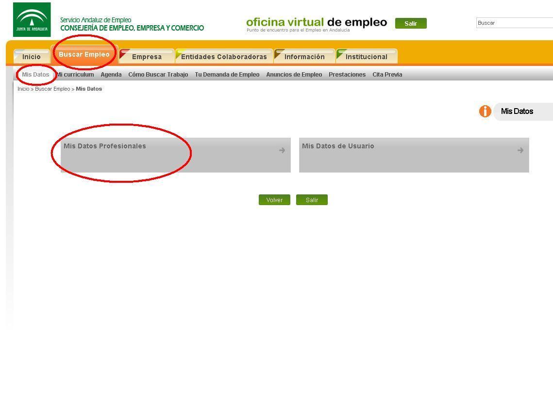 Ya est habilitada la plataforma de bono empleo joven para for Oficina de empleo andalucia