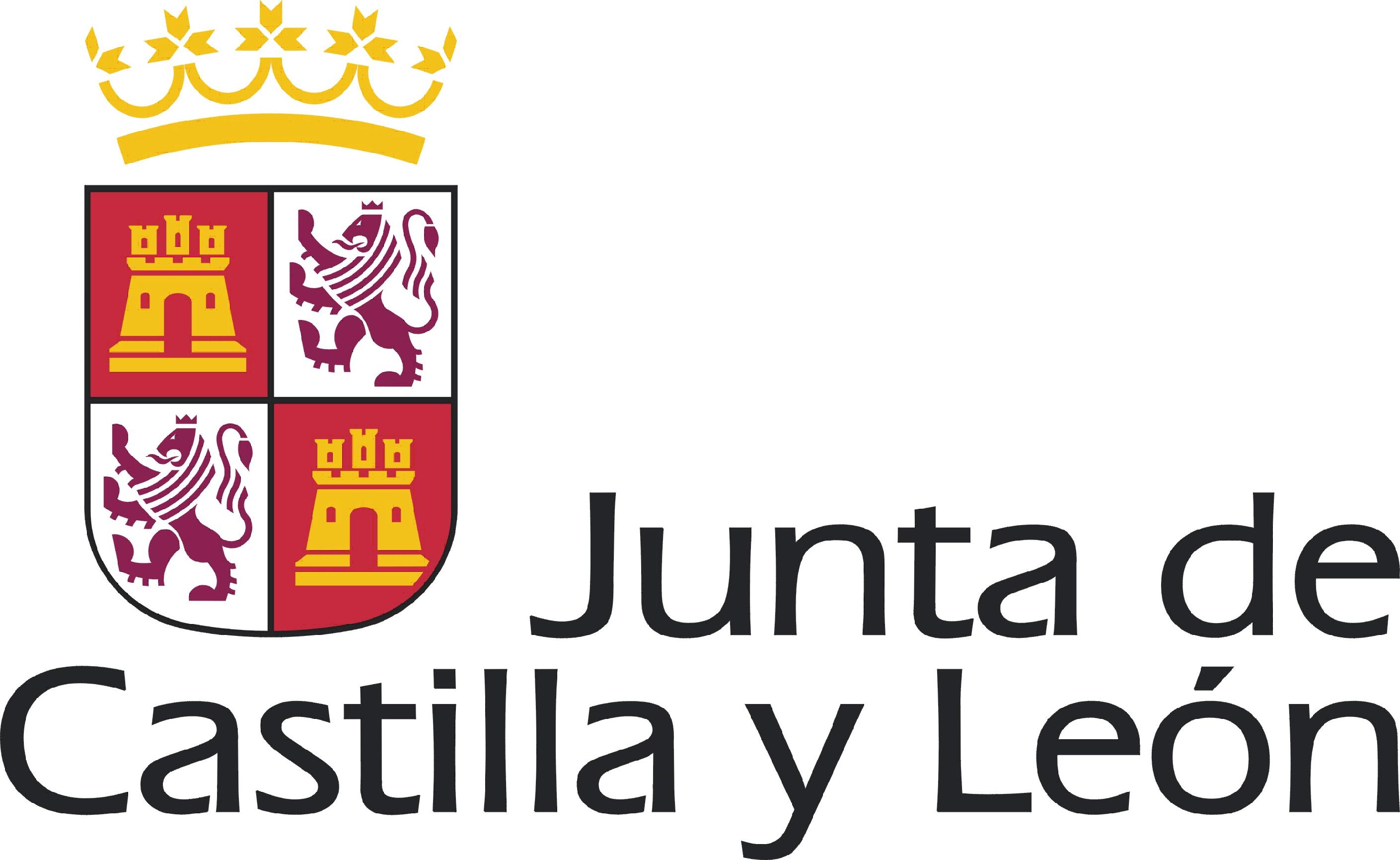 Castilla y le n subvenciona realizar contratos de for Oficina turismo castilla y leon